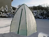 Winter protection plant tents