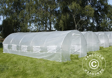 Polytunnel greenhouses