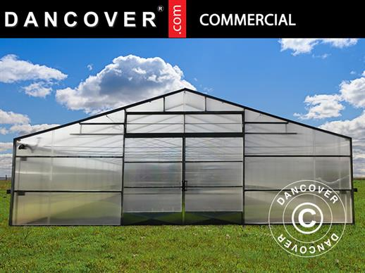 Commercial greenhouse tunnel, 10x16x3.95 m, Transparent