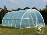 Polytunnel Greenhouse 3x10x1,9 m, Transparent - 4