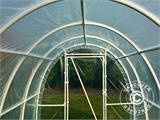 Polytunnel Greenhouse 2,2x4x1,9 m, Transparent - 7