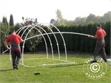 Polytunnel Greenhouse 2,2x4x1,9 m, Transparent - 10