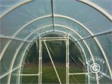 Serre Tunnel 140, 2,2x3x1,9m, 6,6m², Transparent - 5