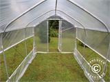 Polytunnel Greenhouse SEMI PRO Plus 4x6.25x2.40 m - 4