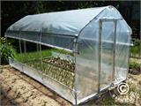 Polytunnel Drivhus SEMI PRO Plus 4x10x2,40m, Transparent - 9