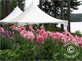 Pagoda Marquee Exclusive 5x5 m PVC, White - 25