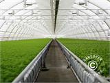 Commercial greenhouse tunnel extension, 9.7x2x3.95 m, Transparent - 1
