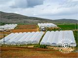 Commercial greenhouse tunnel extension, 9.7x2x3.95 m, Transparent - 6