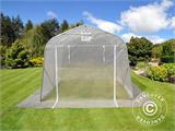 Serre tunnel, 2,4x3,6x2,4m, PE, 8,6m², Transparent - 1
