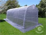 Polytunnel Greenhouse, 2.4x6x2.4 m, PE, 14.4 m², Transparent - 2