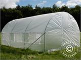 Polytunnel Greenhouse 3x4.5x2 m, Transparent - 2
